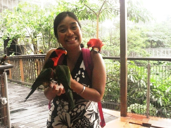Feeding some lories at the Jurong Bird Park
