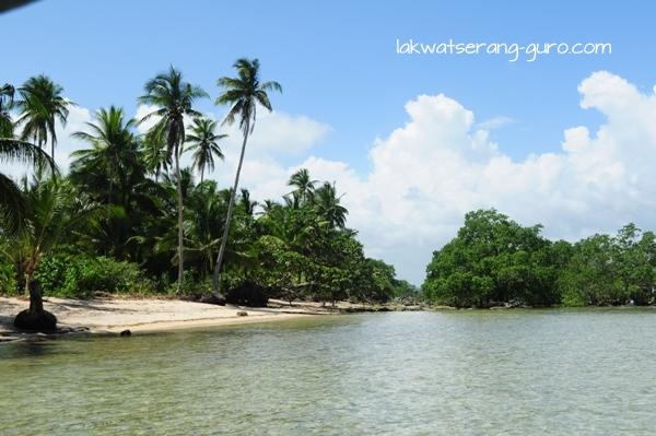 Mangroves near Cloud 9