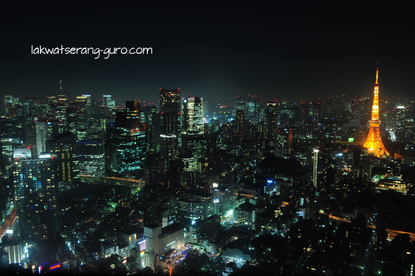 Tokyo skyline at night. Taken from the Mori Tower Observation Deck at Roppongi Hills