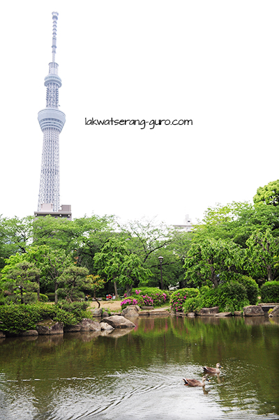 Sumida Park, with the Tokyo Skytree in the background