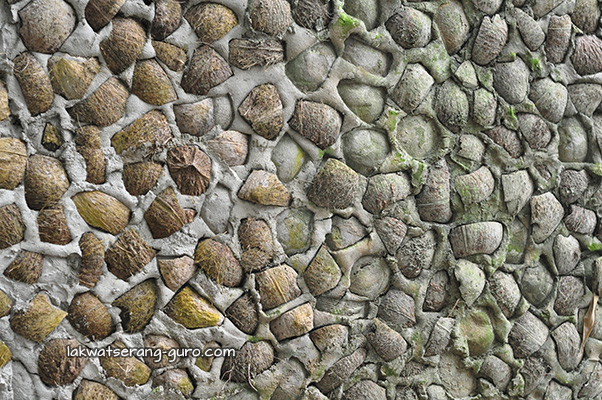 The walls of their guesthouse are made of coconut husks and concrete