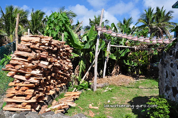 Firewood and dried flying fish
